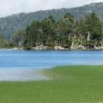 Le lac Laurenti 2